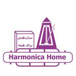 Harmonica Home Azad Class