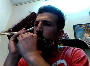 AlikhaniCoverVideo(www.HarmonicaHome.Com)